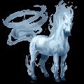 cheval de selle Élément air