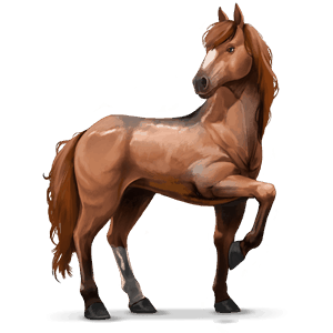 http://gaia.equideow.com/media/equideo/image/chevaux/local/100019/normal.png?qsdfhtz7td112