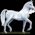 cheval de l'eau givre