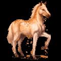 cheval des pierres précieuses topaze