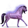 cheval de l'arc-en-ciel brave purple